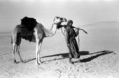 Wilfred Thesiger in the Empty Quarter