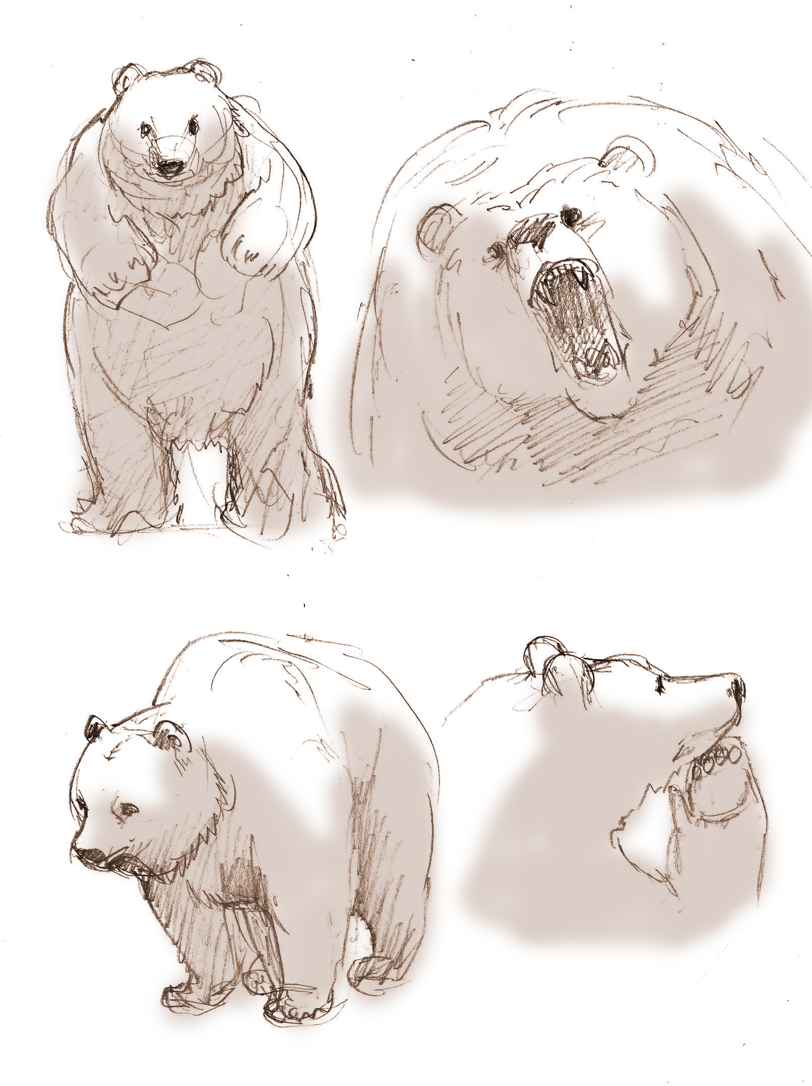 an original prequel to the tempest russ has written concept art for bruin